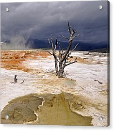 Clearing Storm At Mammoth Hot Springs Acrylic Print