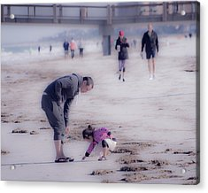 Clearwater Beachcombing Acrylic Print
