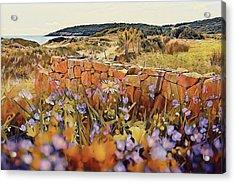 Coastal Pathway Throuigh The Dunes Acrylic Print