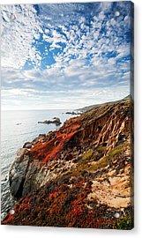 Coastline At Soberanes Acrylic Print by Doug Steakley
