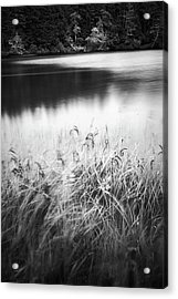 Acrylic Print featuring the photograph Coffenbury Lake by Whitney Goodey