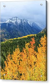 Colorado Aspens And Mountains 4 Acrylic Print