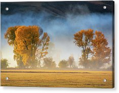 Colorado Autumn Fog Acrylic Print