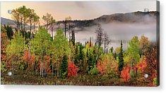 Colorful Autumn Morning Acrylic Print by Leland D Howard