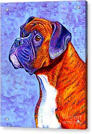 Colorful Brindle Boxer Dog Acrylic Print