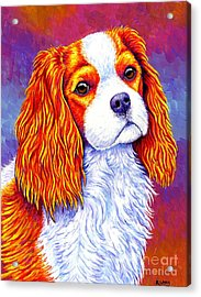 Colorful Cavalier King Charles Spaniel Dog Acrylic Print