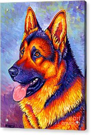 Colorful German Shepherd Dog Acrylic Print