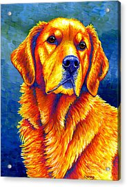 Colorful Golden Retriever Dog Acrylic Print