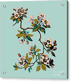 Colorful Hand Drawn Sakura Branch Acrylic Print