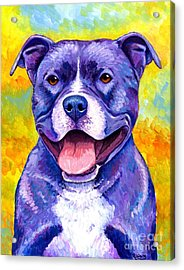 Colorful Pitbull Terrier Dog Acrylic Print