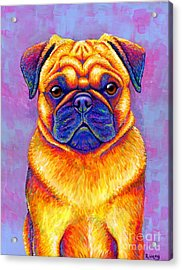 Colorful Rainbow Pug Dog Portrait Acrylic Print