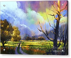 Colorful Summer Field With Acrylic Print
