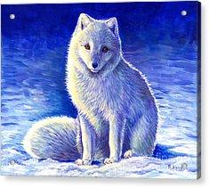 Colorful Winter Arctic Fox Acrylic Print