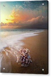 Come Back To The Sea / Maui, Hawaii  Acrylic Print