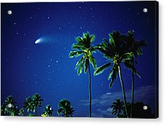 Comet Hale-bopp With  Palm Trees Acrylic Print