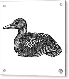 Common Loon Acrylic Print