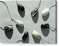 Computer Mice Acrylic Print by Richard Newstead