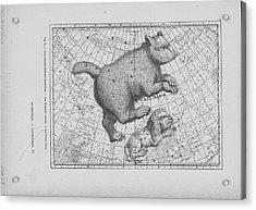 Constellations Ursa Major And Leo Minor Acrylic Print