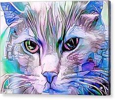 Cool Blue Cat Acrylic Print