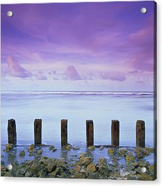 Cotton Candy Skies Over The Sea Acrylic Print