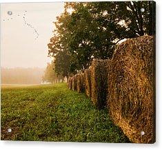 Country Morning Mist Acrylic Print