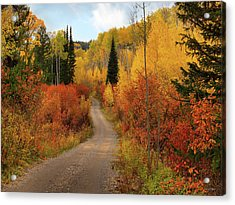 Country Road In Autumn Acrylic Print by Leland D Howard