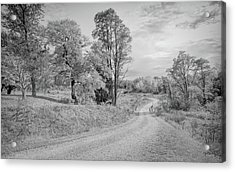 Acrylic Print featuring the photograph Country Road by John M Bailey