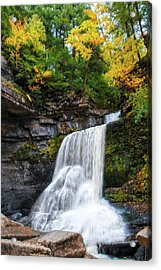 Acrylic Print featuring the photograph Cowshed Falls At Watkins Glen State Park - Finger Lakes, New York by Lynn Bauer