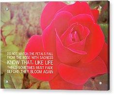 Crimson Velvet Quote Acrylic Print by JAMART Photography
