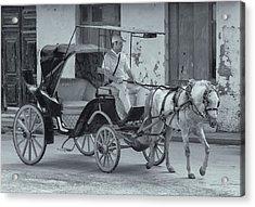 Cuban Horse Taxi Acrylic Print