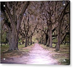 Cumberland Fairytale Lane Acrylic Print