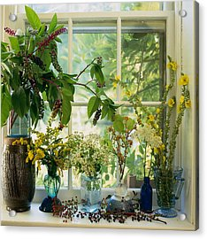 Cut Wild Flowers In Vases On Acrylic Print by Richard Felber
