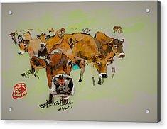 Cute Cows Acrylic Print