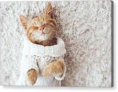 Cute Little Ginger Kitten Wearing Warm Acrylic Print