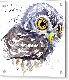 Cute Owl. Watercolor Illustration Acrylic Print