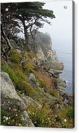 Cypress Cliff Acrylic Print