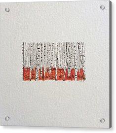 D028 - Birch Trees Acrylic Print