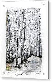 D102 Acrylic Print