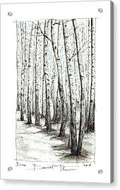 D104 Acrylic Print
