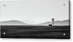 D1148p Acrylic Print