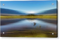 D2056p Acrylic Print