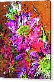 Daisy Rhapsody In Purple And Pink Acrylic Print