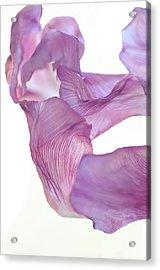Dance In The Wind Acrylic Print