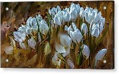 Dance In White #i6 Acrylic Print