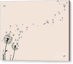 Dandelion Silhouette Snail And Ladybug Acrylic Print