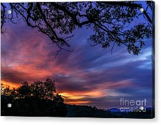 Dawn Of A June Day Acrylic Print