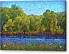 Acrylic Print featuring the digital art Day Of Reflections by Joel Bruce Wallach