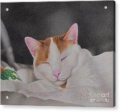 Daydreamer Acrylic Print