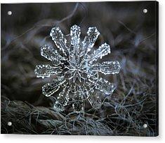 December 18 2015 - Snowflake 3 Acrylic Print