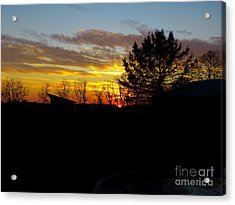 Acrylic Print featuring the photograph December Paint by Donald C Morgan